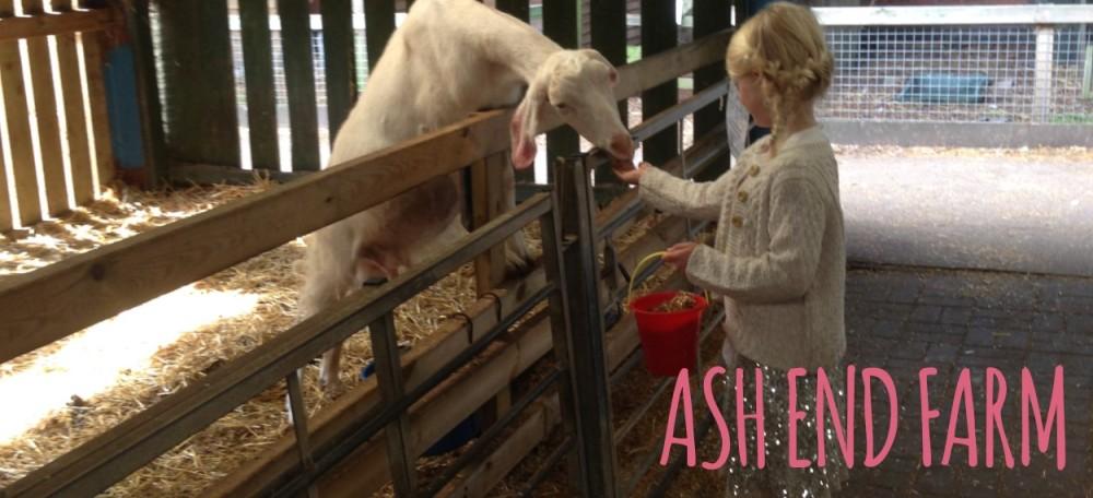 ash-end-farm