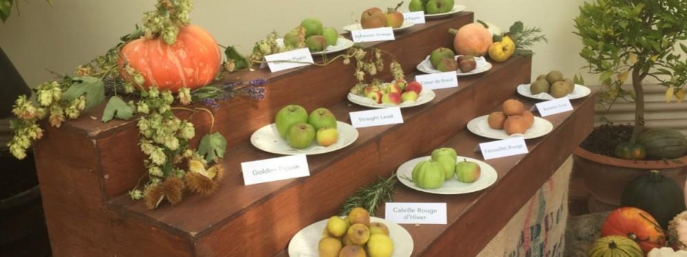 apple-day-display